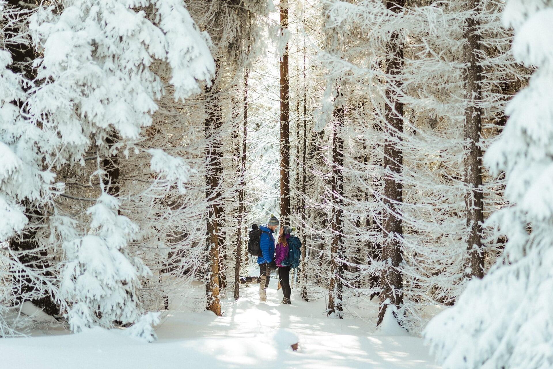 Zimowa sesja narzeczeńska w górach 3