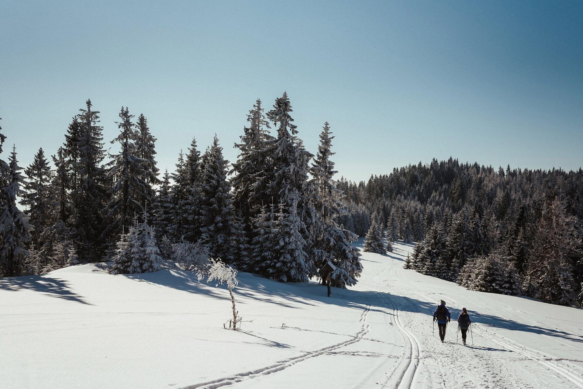 Zimowa sesja narzeczeńska w górach 20