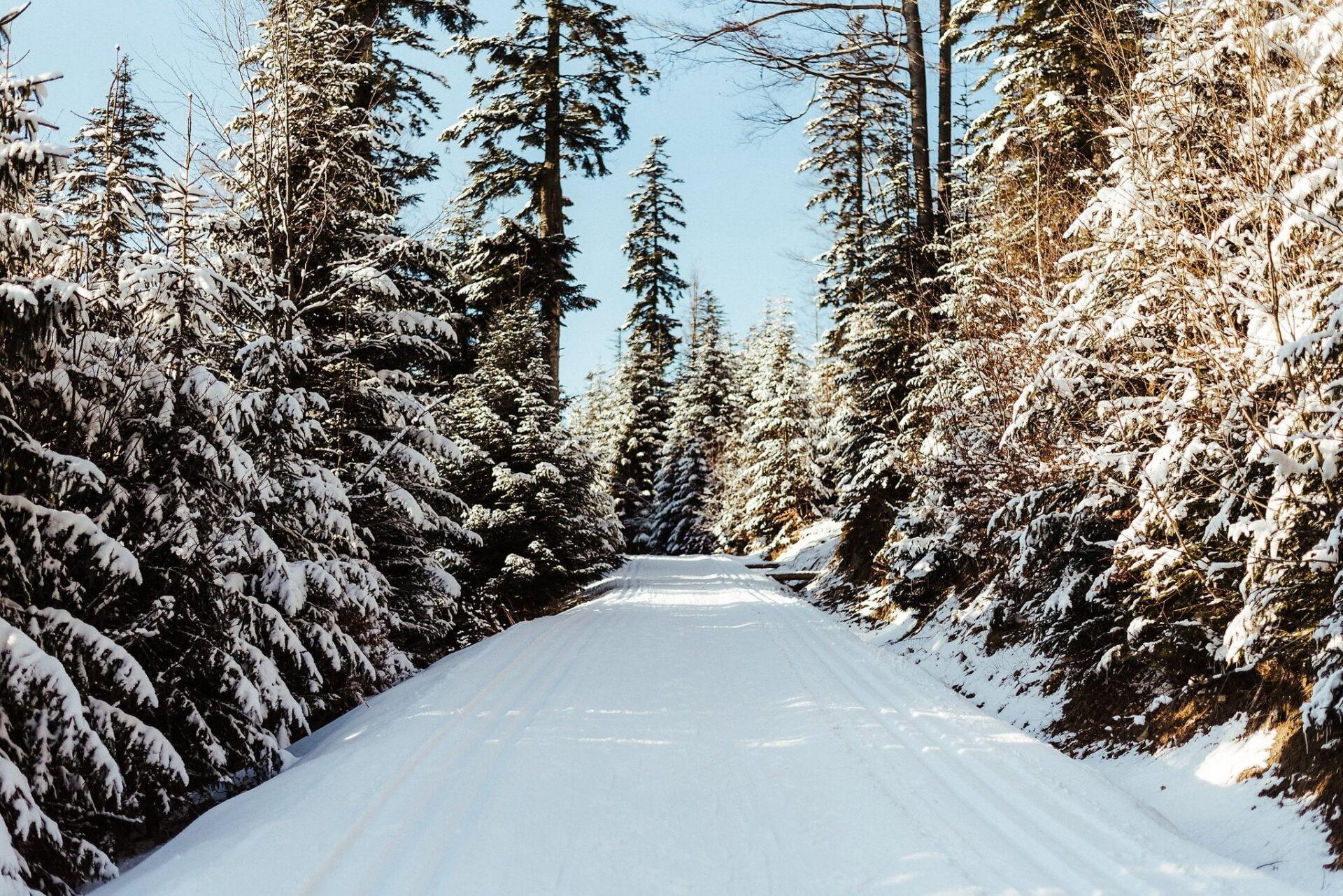 Zimowa sesja narzeczeńska w górach 38